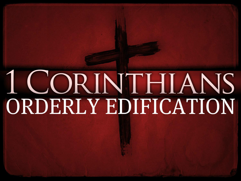 Orderly Edification | The 1st Follower